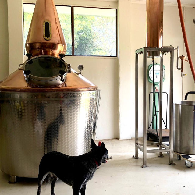 Winding Road Distilling Still